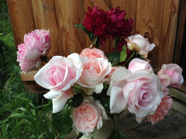Deciding to grow roses at the plot for the vase was inspired
