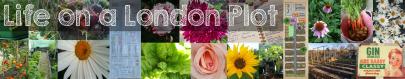 london-plot-header