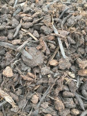 compost 3